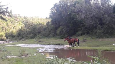 Oportunidad!! Lotes Y Terrenos Sierras De Cordoba (la Falda)