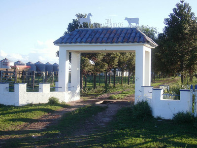 Campo En Venta De Ambientes En Rivera