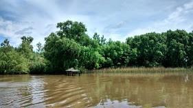 Isla Delta Sobre Canal 4, 100 Mts De Frente Por 700 Mts F