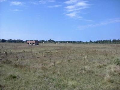 Terrenos Necochea Y Reta