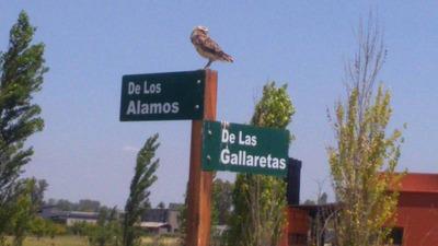 Chacras De La Reserva