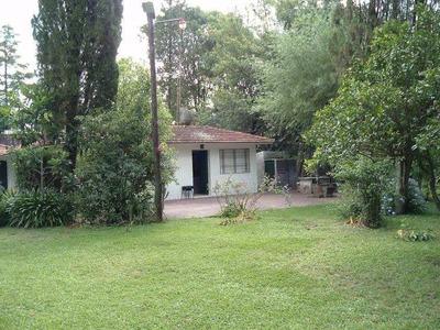 Quinta En Villa Elisa- La Plata