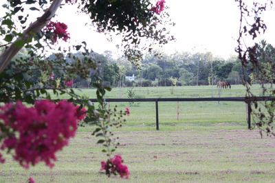Lote 2000 M2 - Barrio Parque El Cazador - En Loteo Cerrado