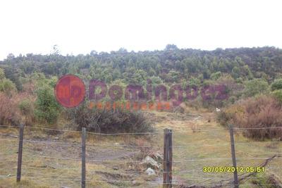 Venta De Lote - Cholila - Chubut - Terreno - Patagonia