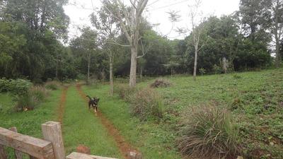 Chacra Ideal Para Plantacion,cria De Animales Y Construccion